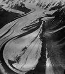 Yanert Glacier, valley glacier with curving moraines due to lobes from merging glaciers, August 13, 1961 (GLACIERS 5093).jpg