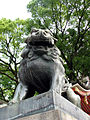 Yasaka lion-dog 02.jpg