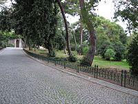 Y�ld�z Park�