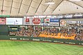 Yomiuri Giants Baseball - Tokyo Dome (17356857206).jpg