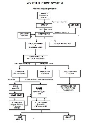 Flow diagram of the procedure followed by Yout...