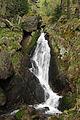 Ysperklamm 2011-05 01 NÖ-Naturdenkmal ME-028.jpg