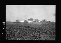 Zdai Warburg. Colony. (Fields or gardens of Warburg). Vegetable gardens on one of the colony's slopes LOC matpc.18656.jpg