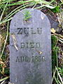 Zulu's grave - geograph.org.uk - 832064.jpg
