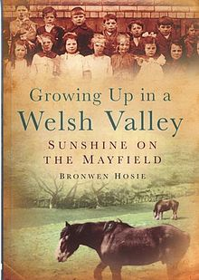 Growing up in a Welsh Valley Sunshine on the Mayfield.jpg