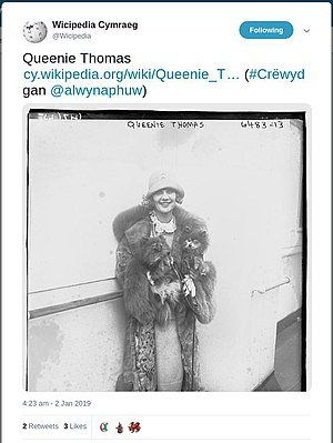 Wicipedia-queenie-thomas-twitter.jpg