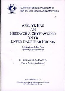 Apel yr Hâg am Heddwch a Chyfiawnder yn yr Unfed Ganrif ar Hugain - The Hague Declaration on Peace and Justice in the Twenty First Century (llyfr).jpg