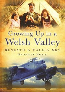 Growing up in a Welsh Valley Beneath a Valley Sky.jpg