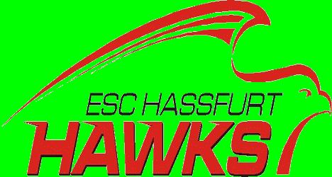 Haßfurt Eishockey