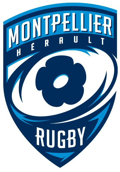 rugby halbfinale 2019