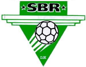 Logo des SB DJK Rosenheim