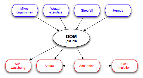 Dom boden wikipedia for Was ist boden definition