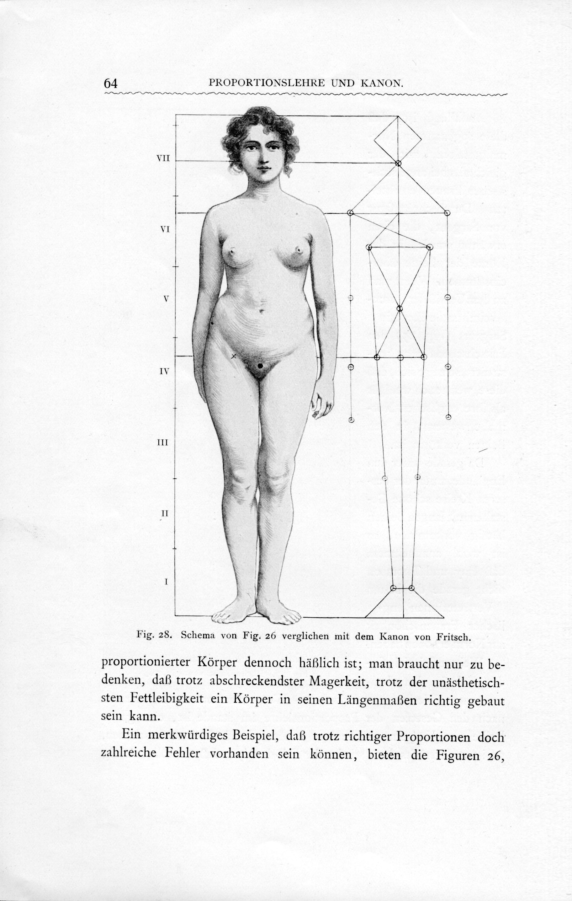 Charmant Innerhalb Weiblichen Körpers Zeitgenössisch - Menschliche ...