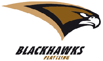 Plattling Black Hawks