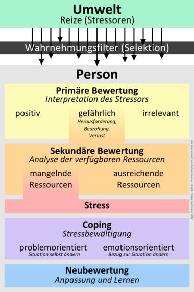 Stressmodell von Lazarus – BurnoutTherapie München