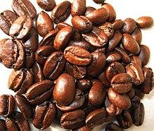kaffee von katzenkot