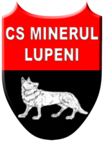 Minerul Lupeni.png