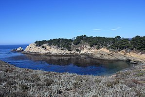 Bucht in Point Lobos