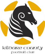 Logo Kildare County.png