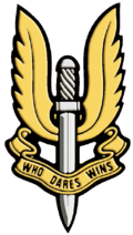 Sas badge.png