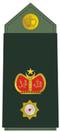 Leftenan Kolonel.png