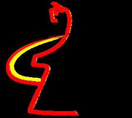 DVM 2017