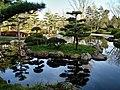 Japan Tag feiert 14. Auflage des kulturellen Austauschs am Rhein ...