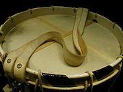 Die auf der Unterseite befindlichen Trommelsaiten, auch Resonnanzsaiten genannt