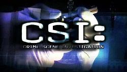 Mini-logo-csi.jpg
