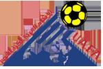UnionArabeFootballAssociation.png