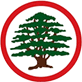 Lebanese Forces logo.png