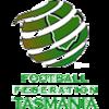 Εθνική τασμανίας (ποδόσφαιρο ανδρών)