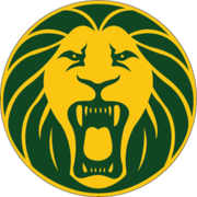 Football Cameroon crest.png