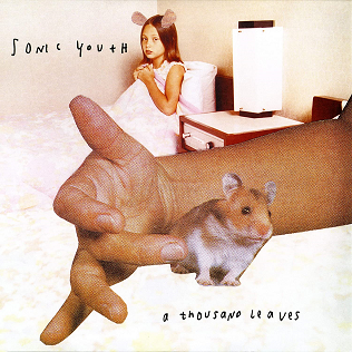 <i>A Thousand Leaves</i> 1998 studio album by Sonic Youth