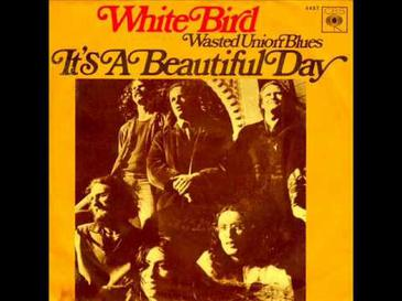 White Bird Song Wikipedia