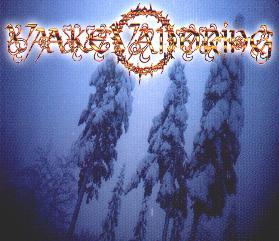 <i>Demo 98/99</i> 1999 demo album by Vaakevandring