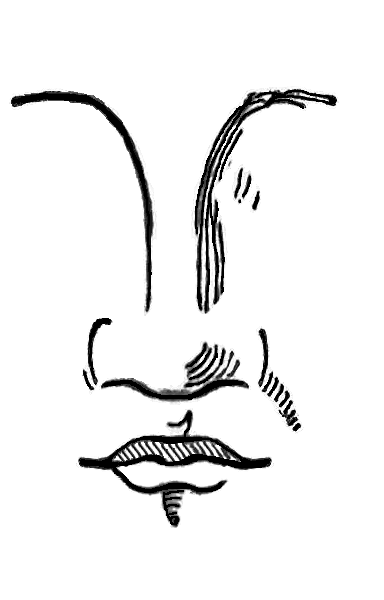 File:Nose Class3.PNG - Wikipedia