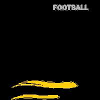 Stade Montois (football)