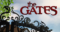 Picture of a TV show: The Gates