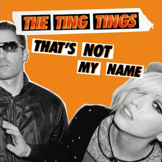 Thats Not My Name 2008 single by The Ting Tings