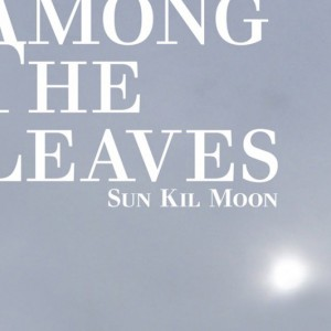 <i>Among the Leaves</i> 2012 studio album by Sun Kil Moon