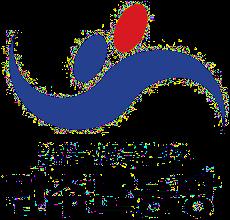 Democratic Labor Party (South Korea) South Korean political party