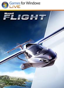 Microsoft_Flight.png