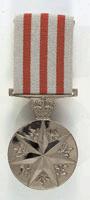 File:DSM Australia medal.png