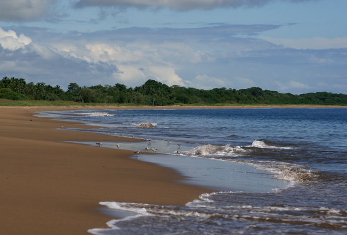Weather For Panama City Beach Radar