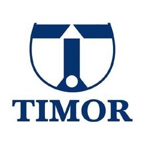 Timor Putra Nasional