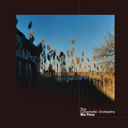 The Cinematic Orchestra To Build A Home Sphericz Remix