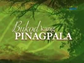<i>Bukod Kang Pinagpala</i> 2013 Philippine television series
