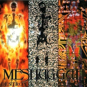 <i>Destroy Erase Improve</i> album by Meshuggah