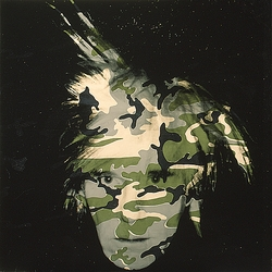 Image result for andy warhol camouflage